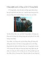 Công nghệ nuôi cá lồng xa bờ ở Trung Quốc pps