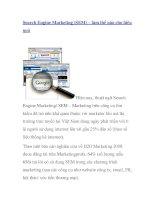 Search Engine Marketing (SEM) – làm thế nào cho hiệu quả potx