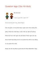 Question tags (Câu hỏi đuôi) ppsx