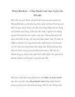 MoneyBookers - Cổng thanh toán trực tuyến cho DN nhỏ pptx