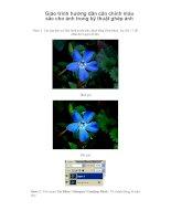 giáo trình hướng dẫn cân chỉnh màu sắc cho ảnh trong kỹ thuật ghép ảnh