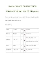Unit 26: WHAT''''S ON TELEVISION TONIGHT? ppt
