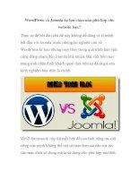 WordPress và Joomla sự lựa chọn nào phù hợp cho website bạn? pptx