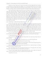 Hệ Thống Kinh Tế - Bảng Lương Doanh Nghiệp phần 3 pptx