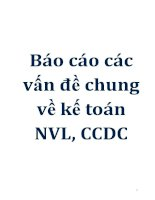 Báo cáo các vấn đề chung về kế toán NVL, CCDC doc
