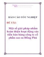 Báo cáo tốt nghiệp: Một số giải pháp nhằm hoàn thiện hoạt động xúc tiến bán hàng công ty cổ phần cao su Đồng Phú pps