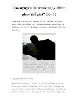 Cao nguyên đá trước ngày chinh phục thế giới? (Kỳ 1) pptx