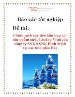 Báo cáo tốt nghiệp: Chính sách xúc tiến hỗn hợp cho sản phẩm nước khoáng Vital của công ty SXKDXNK Bình Minh tại các tỉnh phía bắc ppt