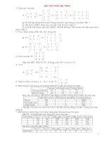 Bài giảng toán kinh tế - Bài tập phần ma trận pot