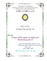 Tiểu luận: Công ty Kềm nghĩa và chiến lược Marketing quốc tế potx