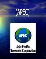Bài thuyết trình: ASEAN va AFTA docx