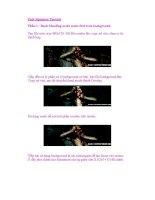 Pain Signature Tutorial Phần 1 : Basic blending mode make first look background ppt