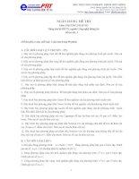 Ngân hàng đề thi: phương pháp số pdf