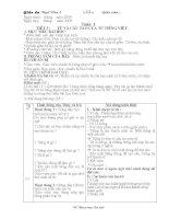 Tiet 3 Từ và cấu tạo từ của Tiếng Việt