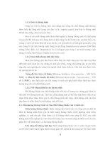 Giáo án môn học Công nghệ dược phẩm - Ts.Trương Thị Minh Hạnh phần 2 doc