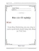 Báo cáo tốt nghiệp: Hoạt động Marketing của các công ty nước ngoài kinh doanh hàng tiêu dùng tại Việt Nam doc