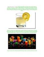 Nghệ thuật trang trí Cocktail pptx