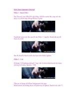 Pure Tears Signature Tutorial Phần 1 : Basic Filter pdf