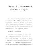 Vi Trùng xoắn Helicobacter Pylori và bệnh loét bao tử và ruột non pdf