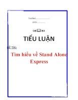 Tìm hiểu về Stand Alone Express ppt