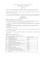 ĐIỀU LỆ CÔNG TY CỔ PHẦN DỊCH VỤ THƯƠNG MẠI VÀ XÂY DỰNG LINH HƯNG doc