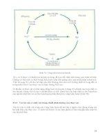 [Vi Sinh Học] Giáo Trình Vi Sinh Đại Học - Ts.Đặng Thị Hoàng Oanh phần 9 potx