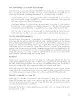 [Vi Sinh Học] Giáo Trình Vi Sinh Đại Học - Ts.Đặng Thị Hoàng Oanh phần 10 pps