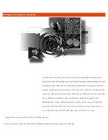 Chương 12: Tạo những hiệu ứng đặc biệt doc