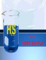 Hidro sunfua NC10