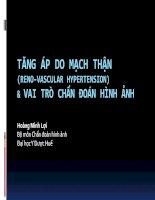 Bài giảng Tăng áp do mạch thận (reno vascular hypertension)  vai trò chẩn đoán hình  Hoàng Minh Lợi