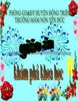 G.án KPKH- Một số loại hoa  Chủ đề TGTV lớp 5-6 tuổi  ( G.án dự thi GVDG năm học 2009-2010)