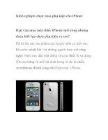 Kinh nghiệm chọn mua phụ kiện cho iPhone docx