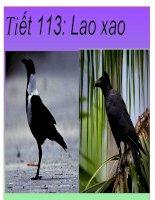 Tiết 113: Lao xao