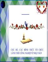 CÁC HÌNH THỨC TỔ CHỨC LÃNH THỔ CÔNG NGHIỆP Ở NHẬT BẢN