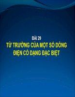 Bai giang Tu truong cua mot so dd co dang dac biet