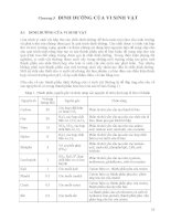 [Vi Sinh Học] Giáo Trình Vi Sinh Đại Học - Ts.Đặng Thị Hoàng Oanh phần 6 ppt