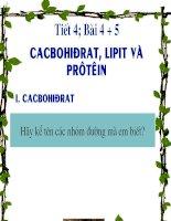bài 4 cacbohidrat va lipit