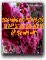 Tràng Giang  - Huy Cận