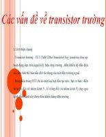 tranzitor trường