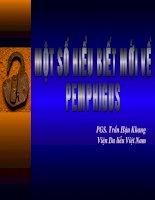 bệnh pemphigus bộ môn da liễu đhyhn