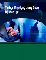 Tổng quan về tình hình ứng dụng tin học trong quản trị nhân lực ở việt nam