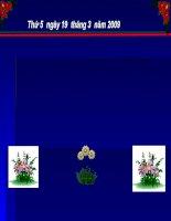 KN sơ lược về phân loại thực vật