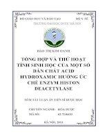 TỔNG HỢP VÀ THỬ HOẠT TÍNH SINH HỌC CỦA MỘT SỐ  DẪN CHẤT ACID  HYDROXAMIC HƯỚNG ỨC  CHẾ ENZYM HISTON  DEACETYLASE