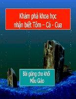 Khám phá khoa học: Tôm-Cá-Cua (bài giảng Mẫu Giáo)