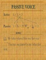 PASSIVE VOICE IN ENGLISH