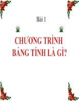 Bai 1 - Chuong trinh bang tinh la gi?