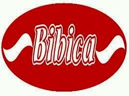Hoàn thiện kênh phân phối truyền thống cho sản phẩm bánh mì của công ty bibica tại khu vực hà đông – thanh xuân – đống đa – ba đình