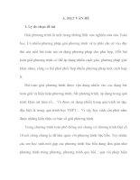 skkn phân loại và phương pháp giải phương trình bậc bốn cho học sinh lớp 10