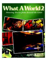 what a world 2 - amazing stories from around the globe