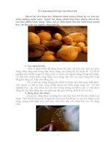 10 công dụng bất ngờ của khoai tây